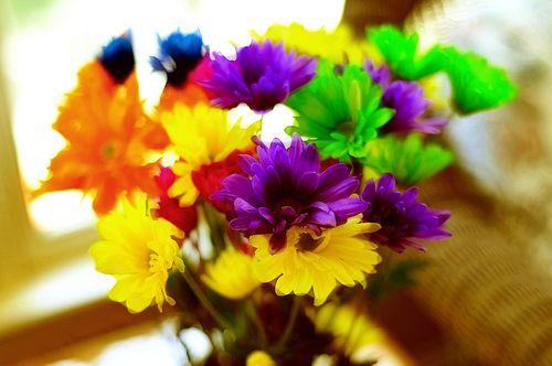 Flowers6970