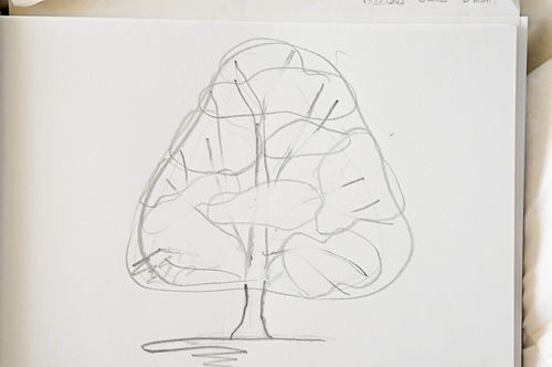Tree_8966
