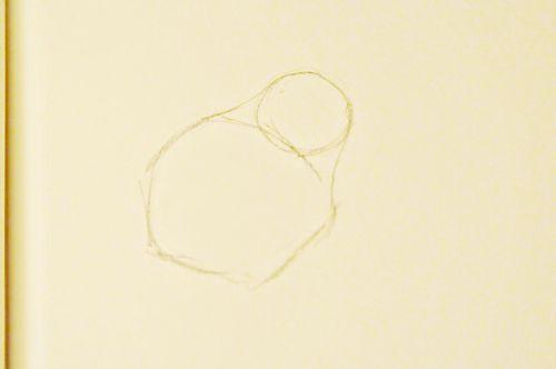 Pears_8783