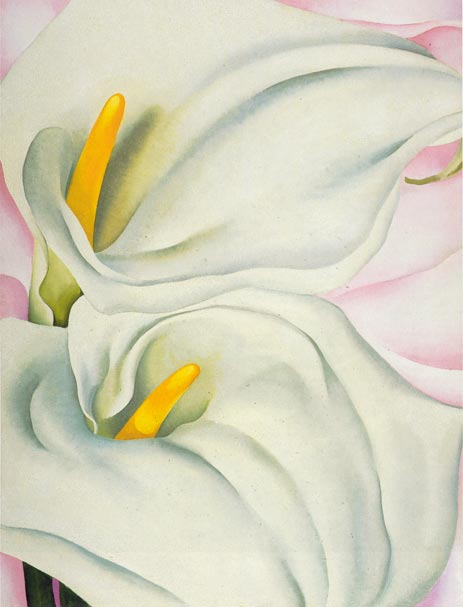 Okeeffe-two-calla-lilies-on-pink-1928