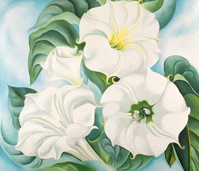 Jimson Weed - O'Keeffe