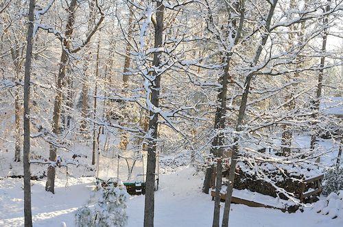 Snow2010_0961